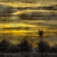 Утро в пустыне (холст) :: Ефим Журбин