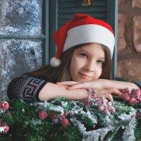 Новогоднии мечты :: Ольга Щербакова
