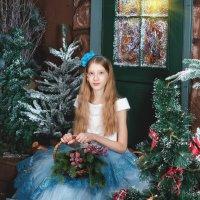 Зимняя сказка :: Ольга Щербакова