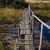 Мост к староверам :: ksanka skornyakova