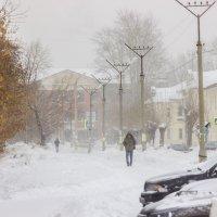 Снегопад :: Дмитрий Костоусов