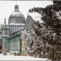 Пушкинская галерея :: Леонид Сергиенко