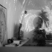 selfi :: Sofia Rakitskaia