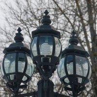 Зимний покой фонарей.... :: Tatiana Markova