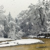 Снежное царство :: Елена Васильева