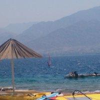 Эйлат. Красное море. :: Герович Лилия