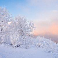 Мороз.. :: Андрей Олонцев