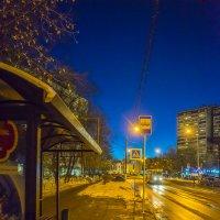 В ожидании ночного трамвая :: Игорь Герман