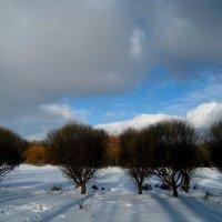 Капризная погода :: Tanja Gerster
