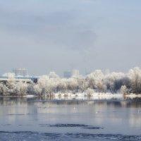 Зима в городе. :: Svetlana