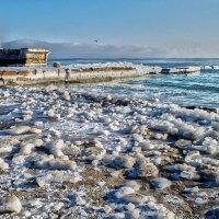 Замёрзший берег. :: Елена Данько
