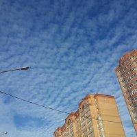 Небо. :: Алена