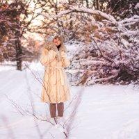 Снежная погода :: Алена Карташова