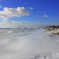Море в январе :: оксана косатенко