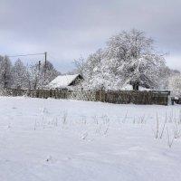 Зима в деревне :: Константин