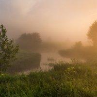 Тишина... :: Андрей Олонцев