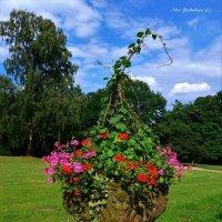 Jenischpark Hamburg (серия).  Вазон с цветами перед музеем :: Nina Yudicheva