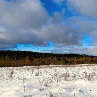 Январское небо (вид из окна а/м) :: Милешкин Владимир Алексеевич