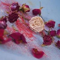 Такие разные... розы :: Ольгушкин _____