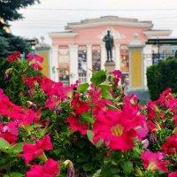 Цветы в рязанском парке :: Алексей Матвейчик