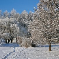 Однажды в морозный и солнечный день января :: Екатерина Торганская