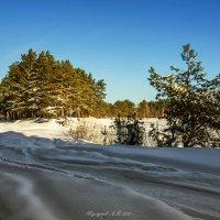 Зимний пейзаж :: Александр Тулупов