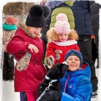 Воспитание любви у детей и собак :: Alent Vink