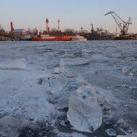 На зимовке :: Наталья Левина
