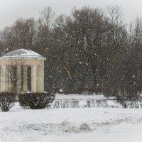 В зимнем  парке :: Людмила Волдыкова