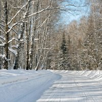 Зимняя дорога :: Дмитрий Конев