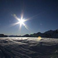 Альпийское солнышко :: Мария Самохина