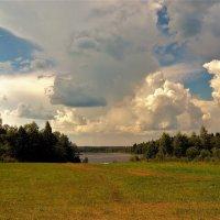 Дорога к озеру Застижье... :: Sergey Gordoff