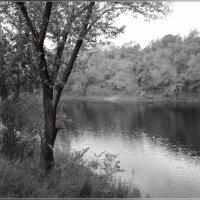 Рябь на воде :: galina tihonova