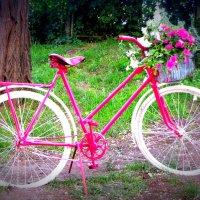 Гламурный велосипед :: Оля5 Соболева