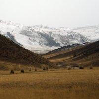 долина :: Сергей Атлашкин