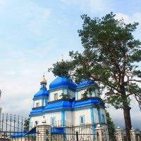 Церковь Богородицы :: Евгений Гузов