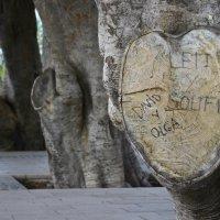 Сердце Картахены :: Сергей Золотухин