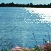 На озере :: юрий Амосов