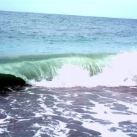 волна черного моря :: Polina
