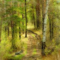 Весна :: Юрий Ягодинцев