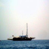в открытом море :: Polina