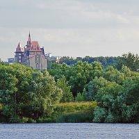 В пойме Москвы-реки. :: Юрий Шувалов