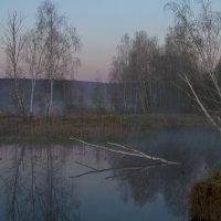 Туман над  озером :: Владимир и Тина Рябоненко