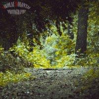 Проход в лес :: Николай Колонтай