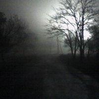 Туман :: Снежанна Ключик