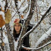 Зима :: Дмитрий Бочков
