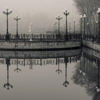 В туманном парке городском... :: Сергей Офицер