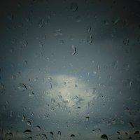 Капли дождя :: Ann Maltseva