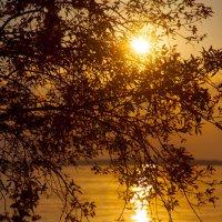 Солнечная дорожка :: Kirill Osin