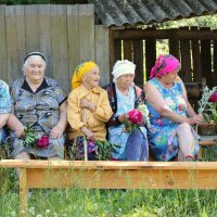 Соседки сударушки :: Алексей Мамаев